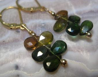 Green Tourmaline Cluster Earrings in 14k Gold Filled Wire