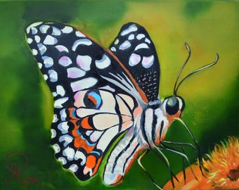 Butterfly painting, butterfly art , original painting , insect art , butterfly wall decor , original oil painting