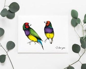 I Love You card, A6, Gauldian finch, Birds, Australian, Australiana, print, Love, Illustration, finches, Botanical, Mother's Day Gift