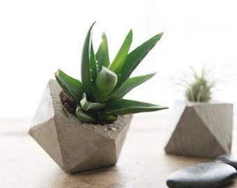 The Tiny Oliver- A geometric concrete planter
