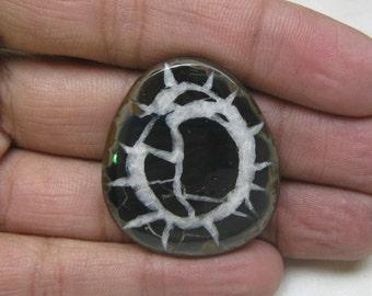 Natural Septarian Cabochon Fancy shape loose semi precious gemstone cabochon size 32 x 36 x 7 mm approx code 6159 Wholesale Gemstone
