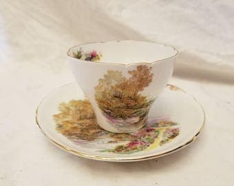 SHelley Heather Tea cup and saucer with outdoor bridge and river scene Very nice