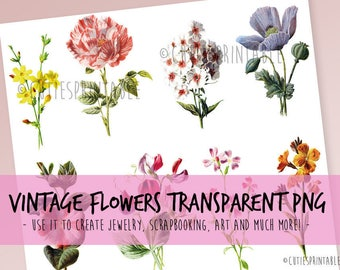 Digital Collage Sheet - Vintage Color Botanical Prints Flower and Plants Botanical Illustration Botany Individual PNG & PDF