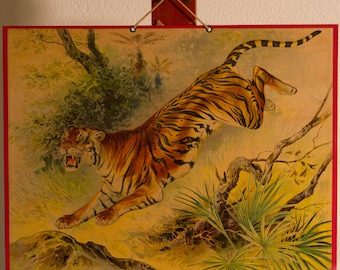 Vintage  Old Print on cardboard  The Tiger School Chart Lithograph