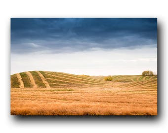 Prairie Print, Autumn Print, Landscape Photo, Fall Colors, Wall Art, Wall Decor, Stormy Skies, Farming Print, Fields, Harvest, Fall Harvest