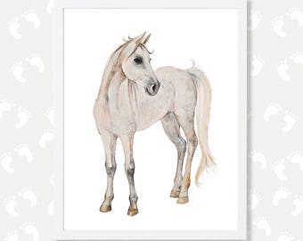 Horse Art Print Baby Nursery Horse Decor Horse Watercolor Painting Instant Digital Download Foal Filly Horse Lover Gift Nursery Wall Art