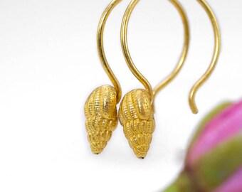 Sea shell hoop earrings