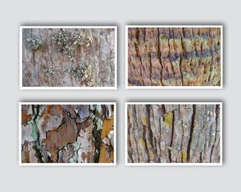 Wall Grouping of Four Soft Bark Art Photographs. 8 1/2  x 11 inches Size. Easy to DIY Frame. Lovely Rustic Wall Decor.