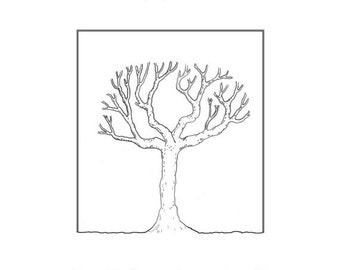 How to Prune an Apple Tree, a guide for real people with imperfect trees