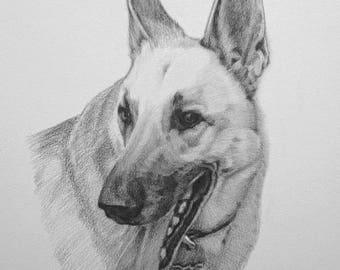 Pet Portrait , Dog Portrait ,Animal Portrait, Custom Pencil Sketch From Your Photo, Hand Drawn