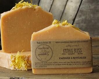 Citrus Bliss Bar | Natural Citrus Soap, Citrus Scented Soap, Lightly Scented Soap, Homemade Citrus Soap, Citrus Soap, Citrus Soap Bar