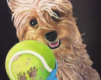 "11""X14"" Custom pet portrait, colored pencils, origional handmade, dog drawing"