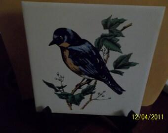 soriano ceramics tile- blue bird