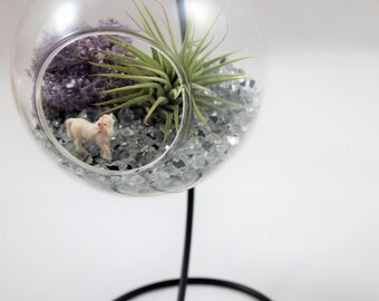 Air plant terrarium with mini unicorn ; unique gift; tillandsia; air plant;terrarium;office decor