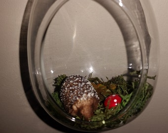 Hedgehog in a glass bauble.