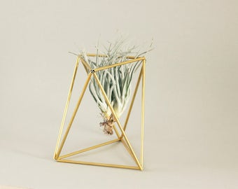 Himmeli TABLE - Geometric table planter - Air plant holder - Indoor planter - Minimalistic - Modern home decor - Mobile - Geometric shapes