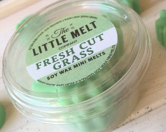 6 Fresh Cut Grass Soy Wax Melts