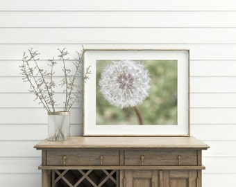 Nature Photography - Dandelion - Photography - Artwork - Home Decor - Photo - Wall Art - Fine Art Photography - Wishes Print