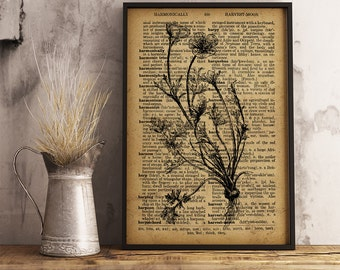 Bulbous Buttercup Dictionary Art Print, Botanical Art Decor, Botanical Illustration, Vintage Wall Art, Nature botanical print,  (F05)