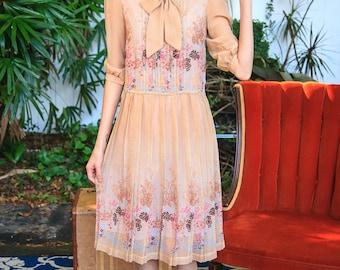 Sweetest 1970s Sheer Dress