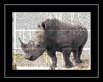 302 Rhinoceros Vintage Paper Picture