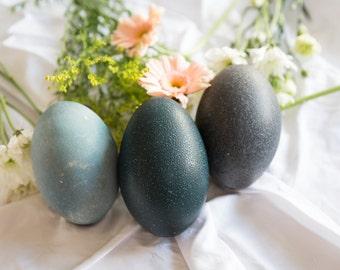 Emu Eggs, Real egg shells, Pysanky, Dragon eggs