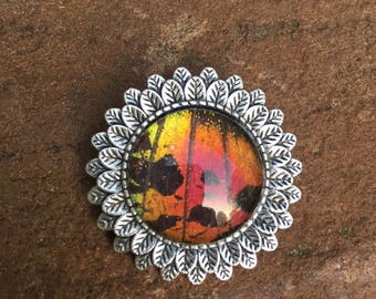 Rainbow Sunset Real Butterfly Wing Brooch