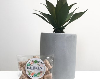 SAMPLE Strawberry and Mint cookies - Tasty Homemade Treats/food/snack for Pet Rabbits, Guinea Pigs, Mouse & Rats