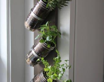 Indoor herb garden // Mason jar herb garden // mason jar decor // mason jar planter