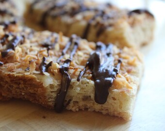 One Dozen Protein Candy Bars- Almond Joy- Vegan, Vegetarian, Gluten Free, Sugar Free, Paleo, Clean Eating, Protein Bar