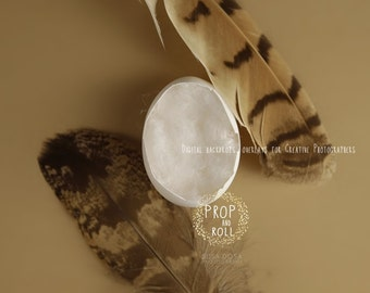 Digital Newborn Backdrop  - Egg Shell newborn digital prop, EGG, falcon feathers, photographie bébé, Neugeborene, bambino fotografia