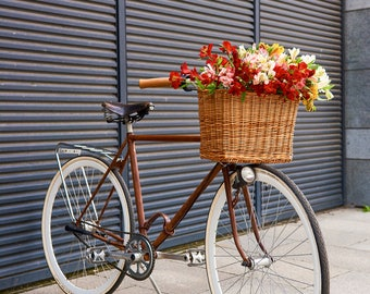 Vogue style basket, Bike basket, bicycle basket, Wicker bike baskets, Grocery basket, Dog bike basket, Bike accessories, Pet basket for bike