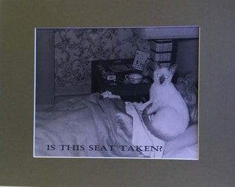 Photo-Is This Seat Taken?