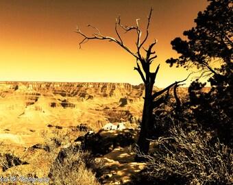 Photography Grand Canyon Art Nature Photography Art Arizona Landscape Photography Art Grand Canyon Fine Art Photography