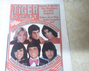 Tiger beat 1976,donny and marie,starsky and hutch,John travolta,Robby benson.