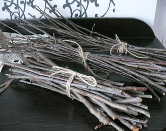 Apple branches, Apple tree, wood branches, wood decor, shamanic supply