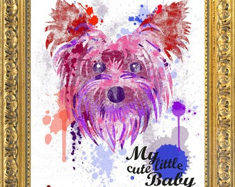 My cute little baby - Yorkshire Terrier - art print