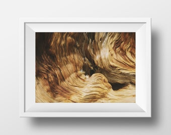 Wood Grain Print, Wood Print, Texture, Nature Photography, Abstract Art, Forest Wall Art, Photography, Nature Print, Instant Download Art