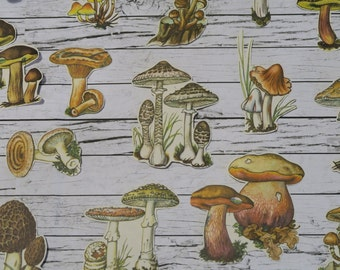 28 Piece Vintage Mushroom Sticker Set