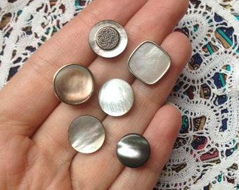 6 vintage shell buttons