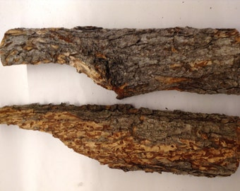 Natural Rounded Tree Bark, 2 medium piece