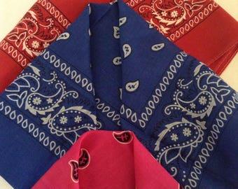 Vintage Scarves / 3 Bandanas