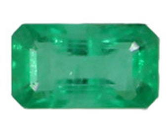 1.00 ct. Genuine Emerald Octagon