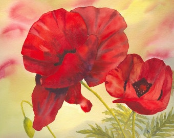 Red Poppies - watercolour - giclee print - red - poppy - flowers - decor - yellow
