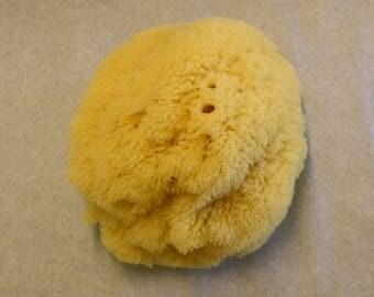"""Natural Yellow Sea Sponge 4"""" - 5"""" // Spa Bath // Sponge // Sea Sponge // Natural Sponge"""