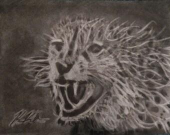 cheeta charcoal drawing