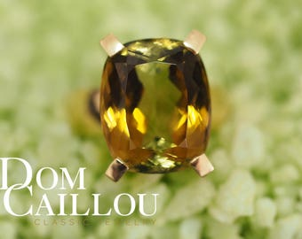 Tourmaline BiColor 14.69 ct 750 gold (18ct) communication