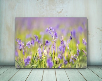 Bluebells photograph, Flower Photography Print, Flower Print, Flower Art (Bluebells in Bloom) - Sell UK/USA