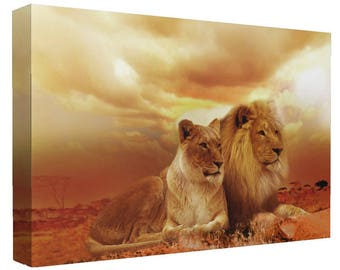 Big Cat Lion and Lioness In Sunset Canvas Print  Wall Art Ready To Hang Or Poster Print