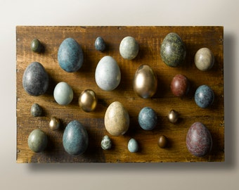 Patinated Bronze Goose Egg